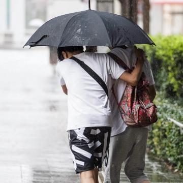 A sok eső térségünkben is növeli a növényvédelmi kiadásokat