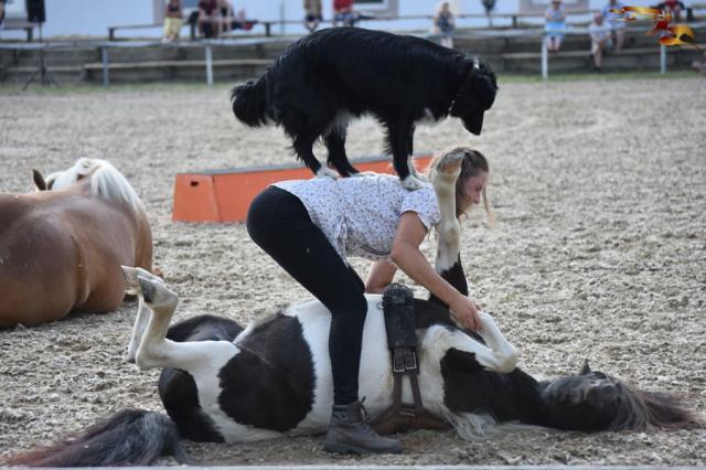 Hatvani lovas nyerte a Hevesi Vágtát
