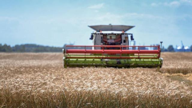 Átlagos termés várható egész Jász-Nagykun-Szolnok megyében