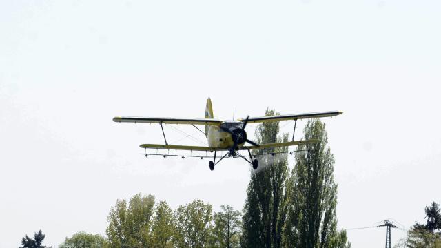 Folytatódik az országos szúnyoggyérítési program