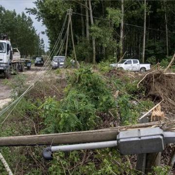 Országszerte kidőlt fákhoz, leszakadt villanyvezetékekhez riasztották a tűzoltókat