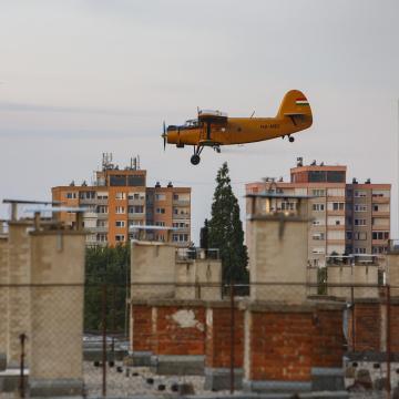Kaptak a szúnyogok Nagykanizsán