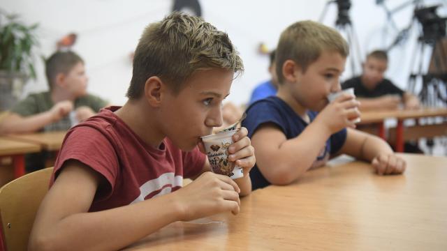 Fiatalok jelentkezését várja élelmiszerfogyasztási felméréshez a Nébih