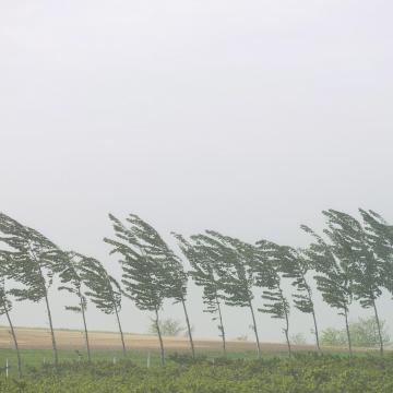 Megdőlt a szélrekord, rengeteg eső hullott