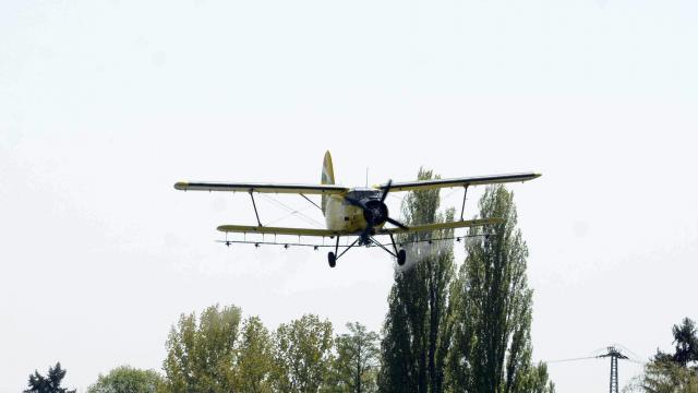 Vízparti térségekben folytatódik a szúnyogirtás