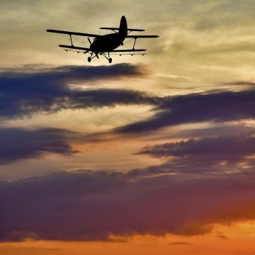 Az elmaradt szúnyoggyérítést pótolják a héten