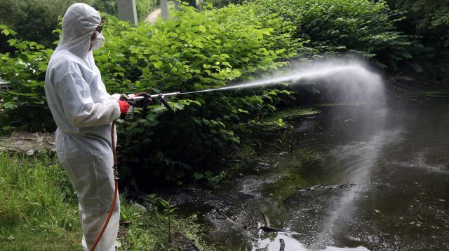 Szúnyogirtás a héten több helyen is