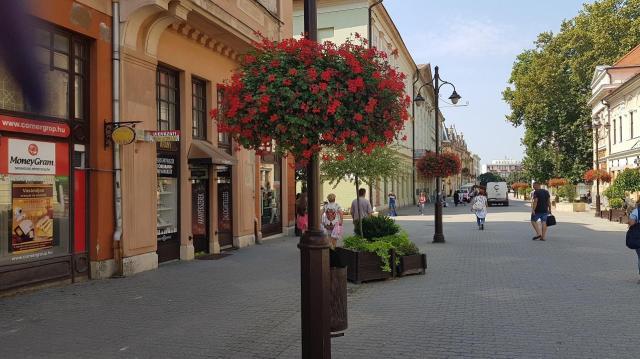 Újabb elismerés a kaposvári virágoknak