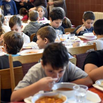 A jövő fogyasztóinak neveléséről is szól az iskolai tej- és gyümölcsprogram