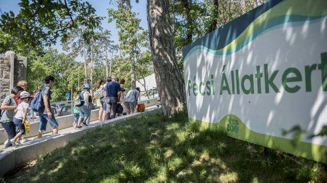 Rangos világszervezet teljes jogú tagjává vált a Pécsi Állatkert