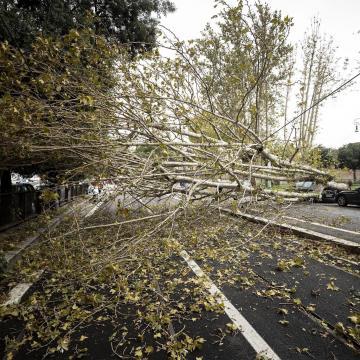 Riasztásokat adtak ki a viharos szél veszélye miatt