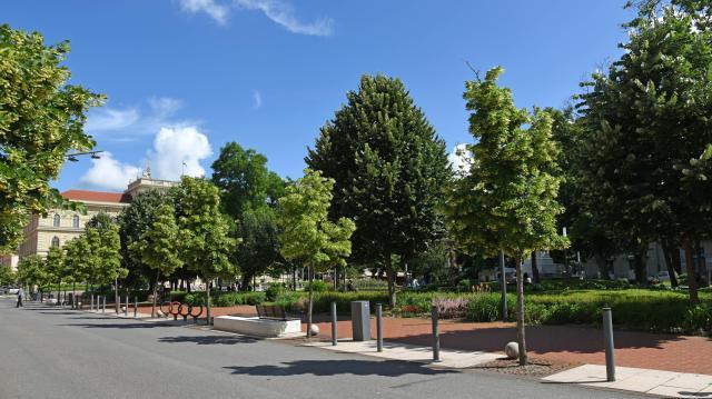 Szegedi zöldterületeket újítanak meg