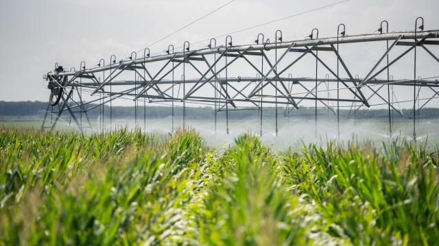 Farkas Sándor: A magyar mezőgazdaság erősödik