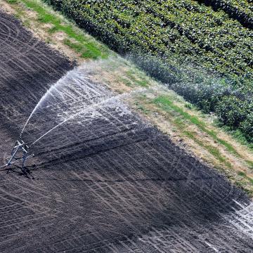 Vidékfejlesztésre 3000 milliárd forintot kapott a mezőgazdaság