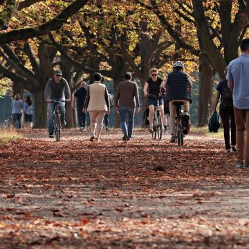 Melegszik az idő az első novemberi hétvégén