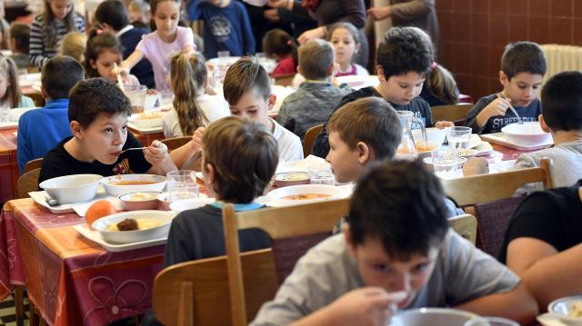 Program indul a gyermekvédelem és a vendéglátás összekötésére