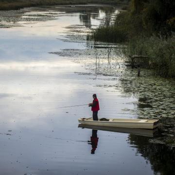 Vizes élőhelyek újulnak meg a Duna egykori árterén