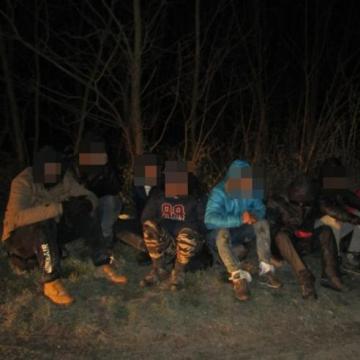 Bács megyében 41 külföldit tartóztattak fel