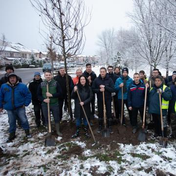 Folytatódott a Debrecen, a mi kertünk akció