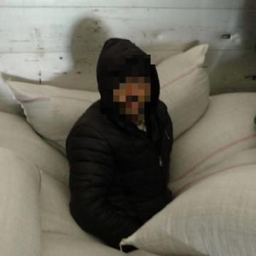 Illegális migránsok Csongrád megyében