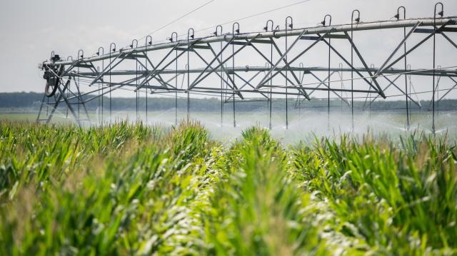 Új korszakot nyit az agráriumban az öntözésről szóló törvény elfogadása