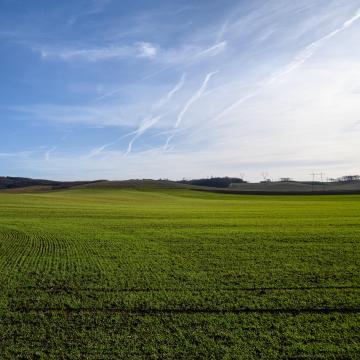 A magyar vidéknek fontos a mezőgazdaság
