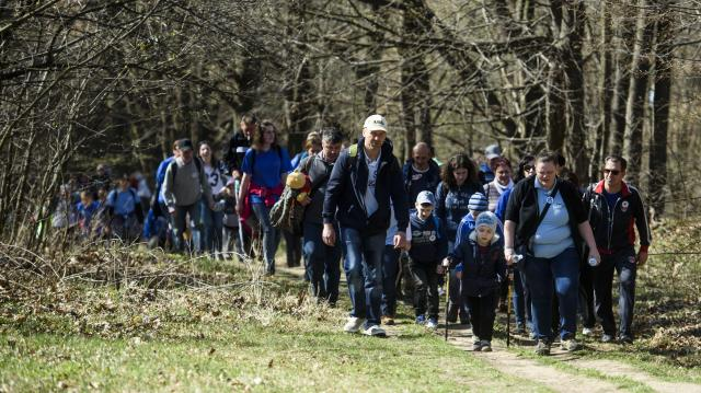 Új útvonalakkal és vándortáborral bővül idén a Vándortábor program