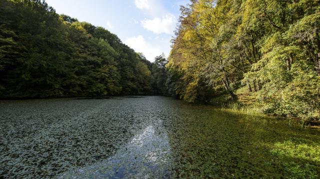 40 ezer hektárnyi vizes élőhely újult meg
