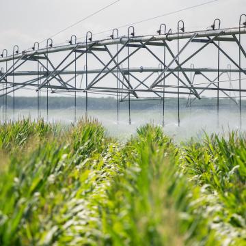 A VízŐr magyar találmány, amivel aszályos időben is gazdagabb lesz a termés