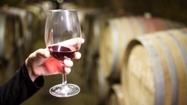 Száz borászat adatai vannak fent a magyar bor honlapján