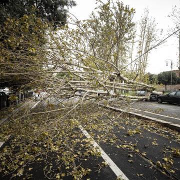Az ország nagy részén csütörtökön is erős lesz a szél