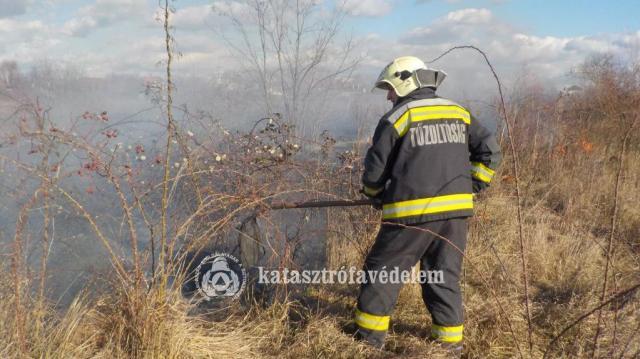 Tűzhöz riasztották az egységeket tegnap