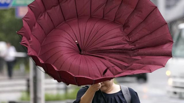 Elsőfokú riasztások a viharos szél miatt