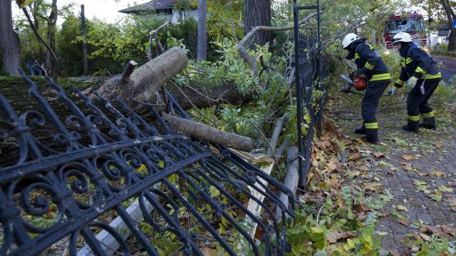Több megyében másodfokú riasztások a viharos szél miatt