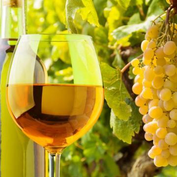 A termelőknek kedvez az új borszabályozás
