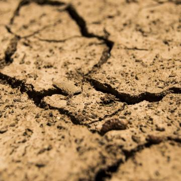 Erősödő szárazságra hívja fel a gazdák figyelmét a meteorológiai szolgálat