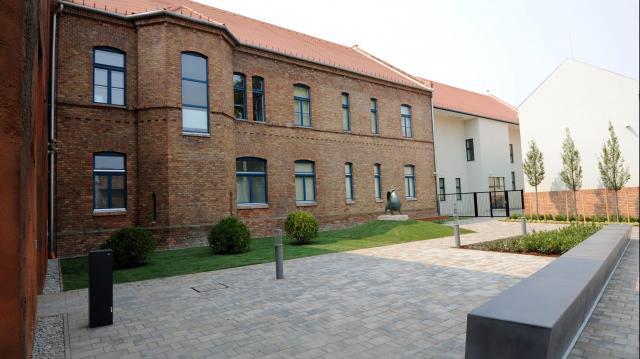 Ismeretterjesztő videósorozatot indít a Tornyai-múzeum