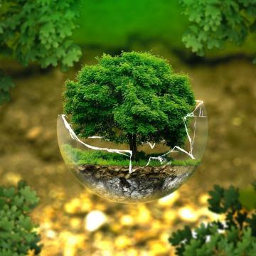 Meghosszabbítják a fenntarthatósági pályázatok jelentkezési határidejét
