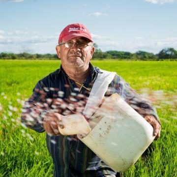 Nem akadályozza a mezőgazdasági munkákat a kijárási korlátozás