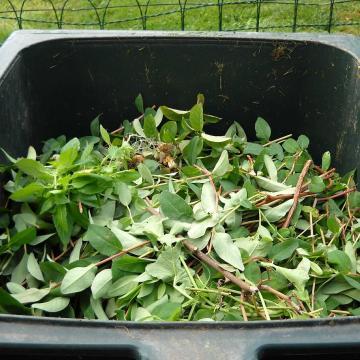 Van, ahol kérik, van, ahol tiltják a kerti hulladék égetését vidéken