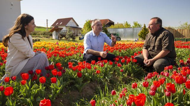 A virágvásárlással sok munkahely megmenthető