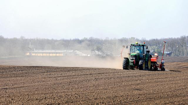 Kedvezőbbek a mezőgazdasági egyszerűsített munkavállalás szabályai