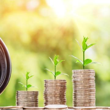 Május 15-ig lehet pályázni a mezőgazdasági biztosítási díjtámogatásra