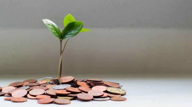 50 milliárd forintra pályázhatnak mikro-, kis- és középvállalkozások