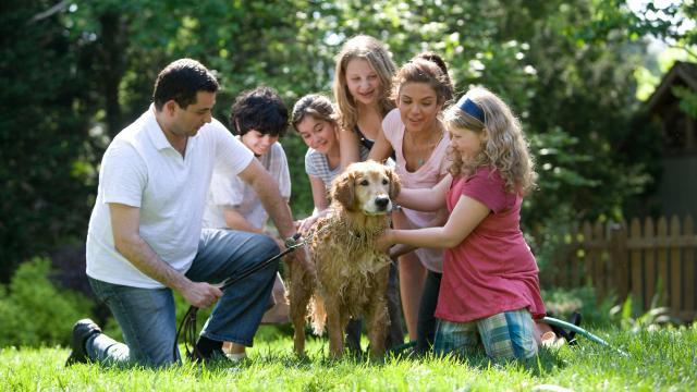 Élni kell a családtámogatások adta lehetőségekkel
