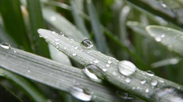 Esős hét elé nézünk