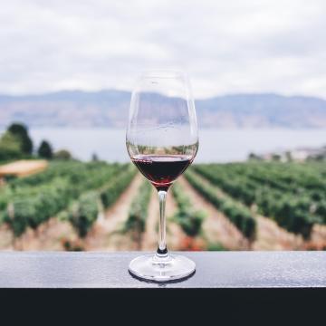 Megkezdődött a borpiac átrendeződése