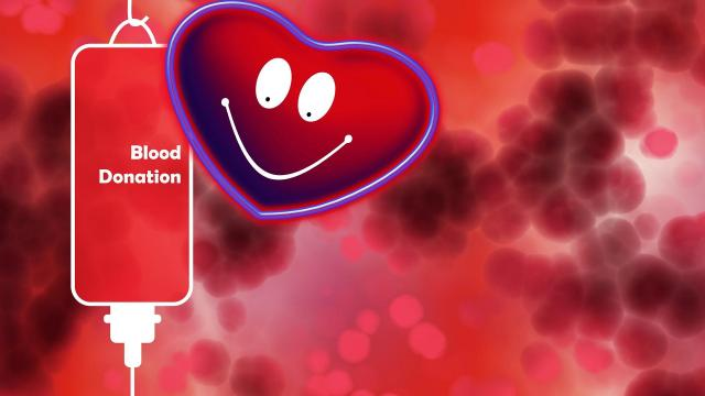 Adj vért, ments életet!
