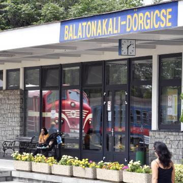 Balatoni peronokon szólnak a versek nyáron
