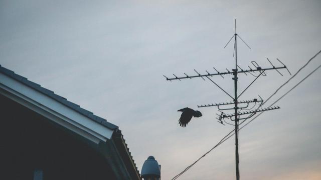 Június 3-án újabb átállás lesz az Antenna Hungáriánál